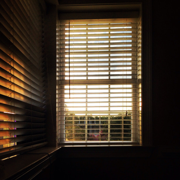 News Window Blinds